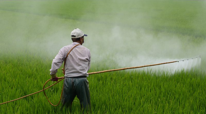 pesticides market