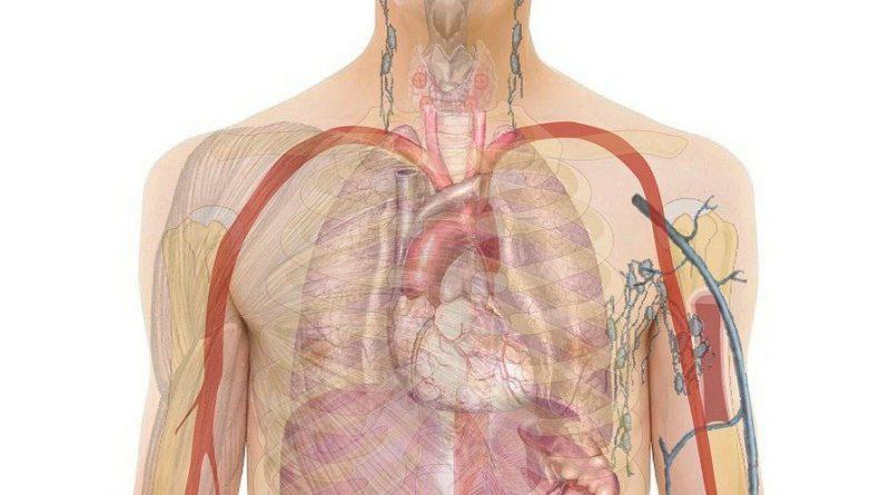Anatomic Pathology Equipment & Consumables Market