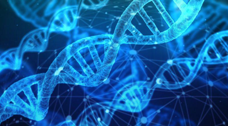 Antisense & RNAi Therapeutics Market