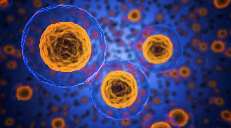 Global Cellular Immunotherapy Market