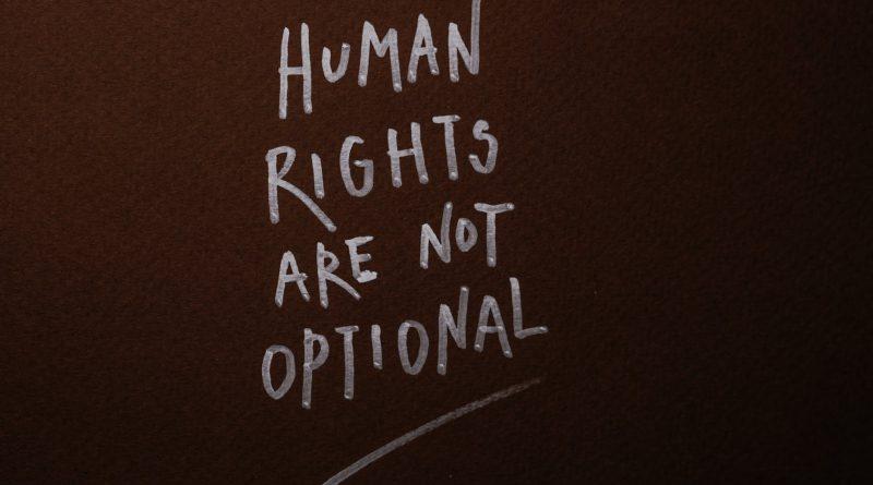 Global Human Rights Organizations Market